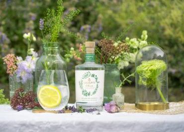 Nu lanseras två sofistikerade alkoholfria gin