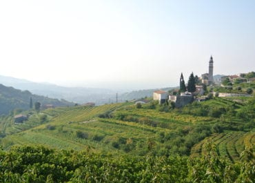 Besök hos Bolla Vini i Valpolicella
