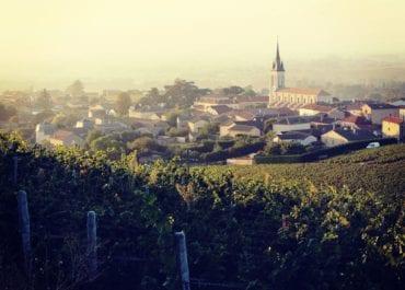 Maison Jean Loron - Några av de vackraste vinodlingsregionerna i Frankrike!