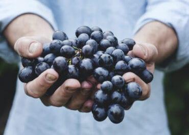 Så revolutionerar e-handeln vinbranschen