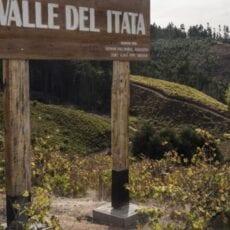 La Causa País 2018 – Historisk druva i ny tappning