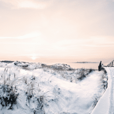 Julmys med 100-Årstwist