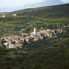 Familjen Allegrini har ett historiskt arv av spetskompetens av vinframställning i Valpolciella