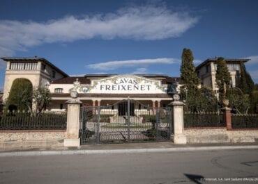 Freixenet satsar på ekologiska mousserade viner