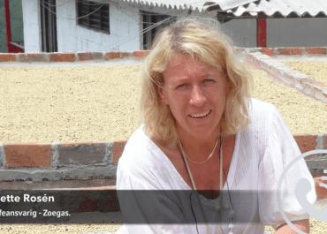 WEBB-TV: Minette Rosén om årets sommarkaffe från Zoégas