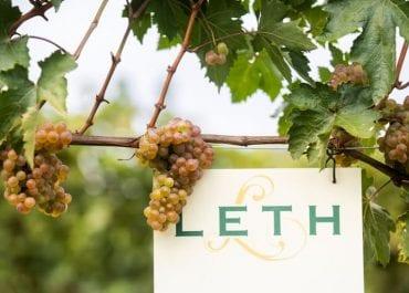 Ny årgång lanseras från familjeföretaget Weingut Leth
