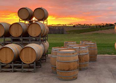By Farr viner från Côte Vineyard